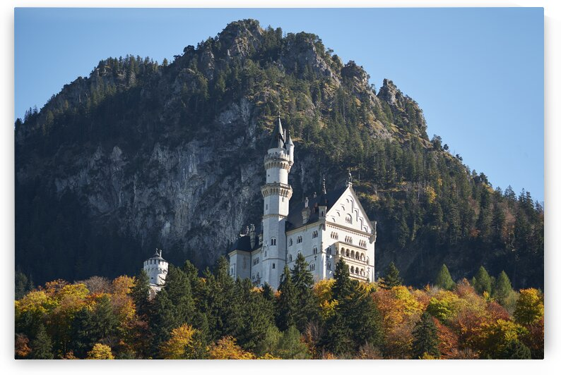Neuschwanstein castle on mountain side Bavaria Germany Europe by Atelier Knox