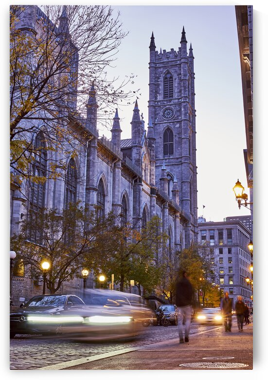 Notre dame cathedral at night in citys tourist district Montreal Quebec Canada by Atelier Knox