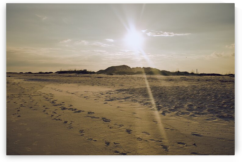 Sandy beach with footprints and sunset behind in northern Florida by Atelier Knox