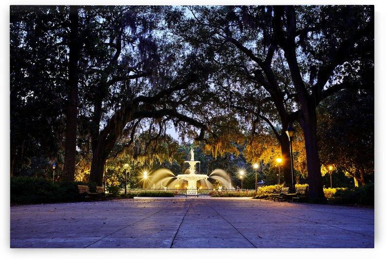 Forsyth Park fountain at night Savannah Georgia USA by Atelier Knox