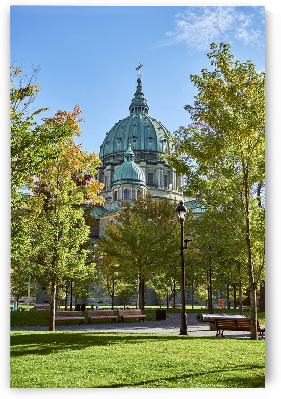 Mary Queen of the world cathedral through the trees in downtown park Montreal Quebec Canada by Atelier Knox
