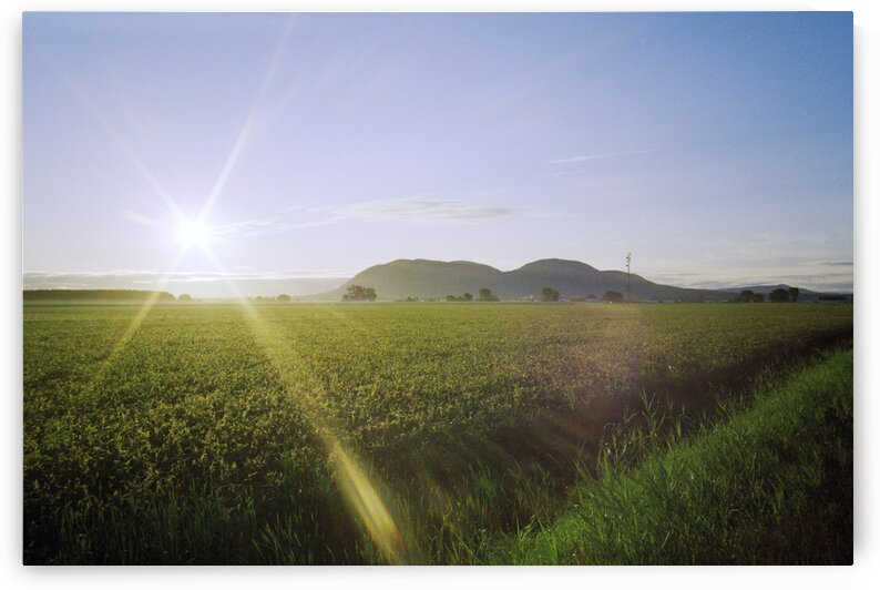 Mountain farmland and sunflare from side of road Beloeil Quebec Canada by Atelier Knox