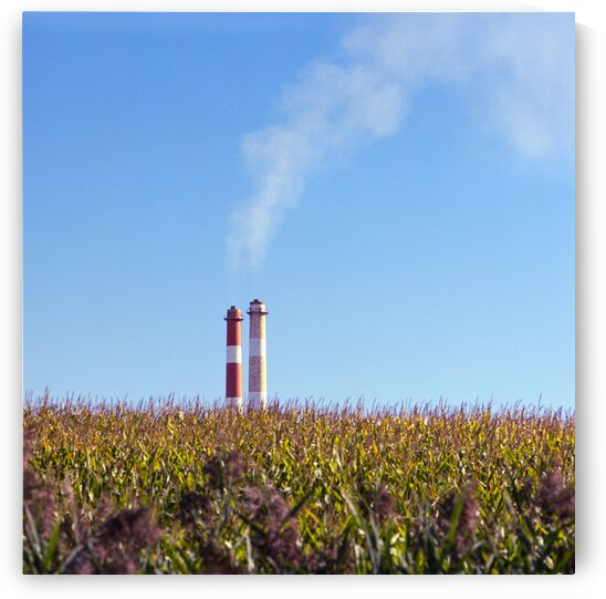 Smoke stacks with corn fields Quebec Canada 2020 by Atelier Knox
