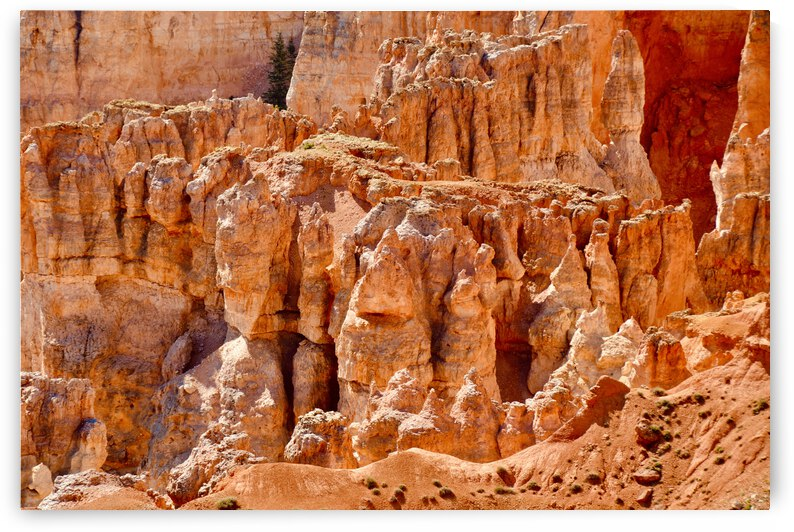 Hoodoo Formations ... Bryce Canyon National Park  Utah by Fred J Bivetto