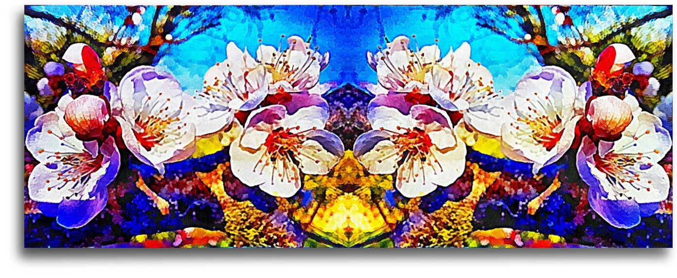 Apricot Blossom Mirrored by Dorothy Berry-Lound