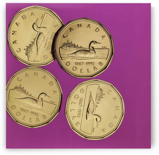 Dollars canadiens sur fond rose - Canadian dollars on a pink background  by Daniel Ouellette