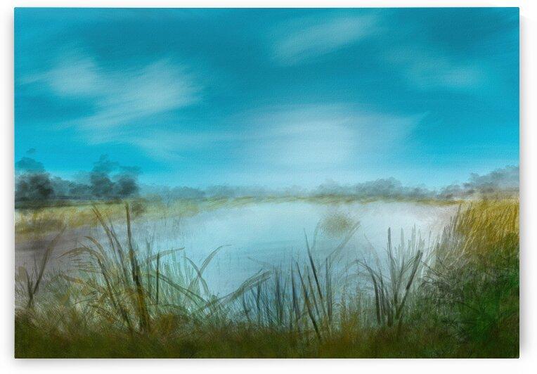 Laguna Niguel Lake by Eric Blue Art