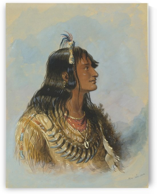 Mawoma by Alfred Jacob Miller