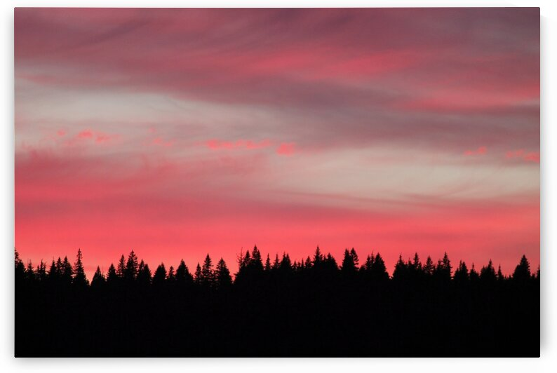 Fire over treeline by 5280Images