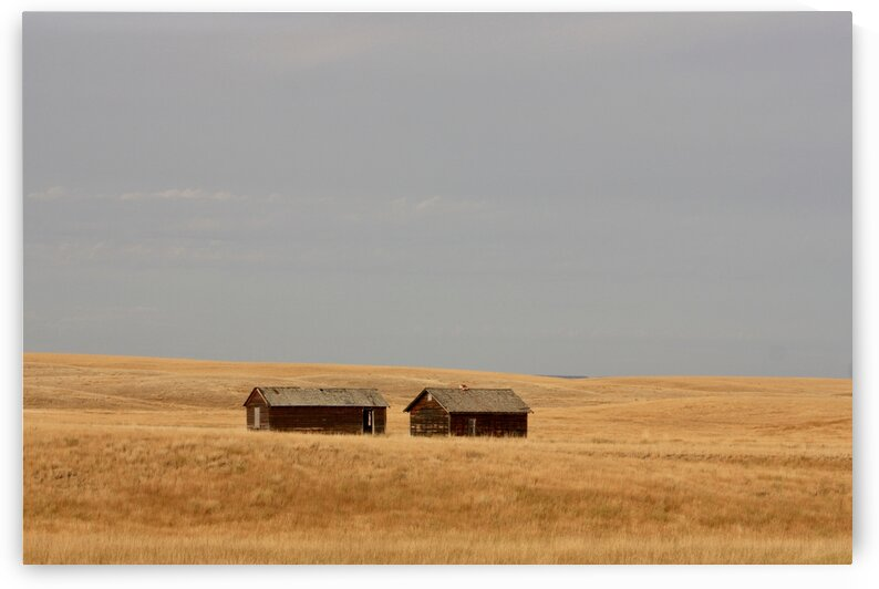 Forgotten barns by 5280Images