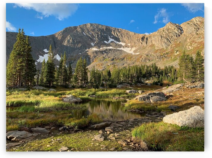 Rocky mountain national park spring tine by 5280Images