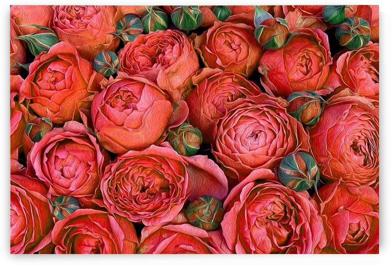 Orange roses with buds. by Ievgeniia Bidiuk