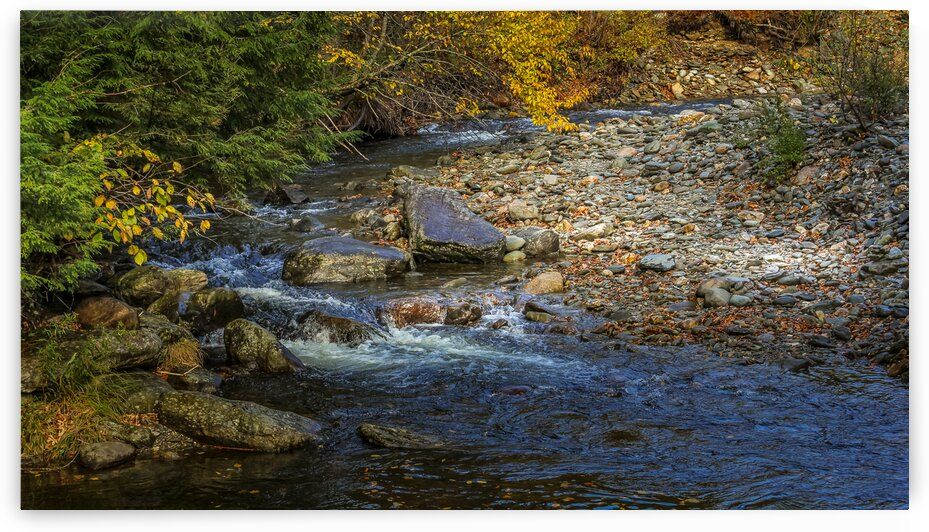 Crooked Creek by Nicholas