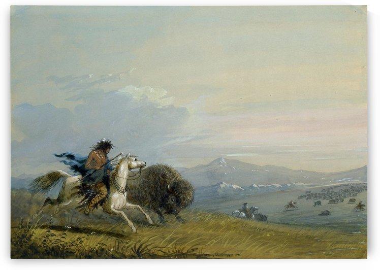 Pawnee Running Buffalo by Alfred Jacob Miller