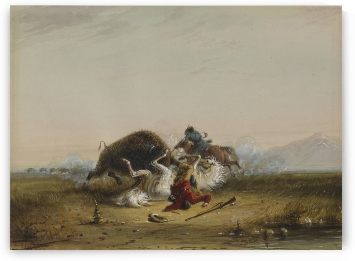 Pierre and the Buffalo by Alfred Jacob Miller