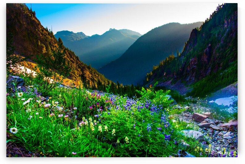 Vesper Peak Valley by Nick Welch
