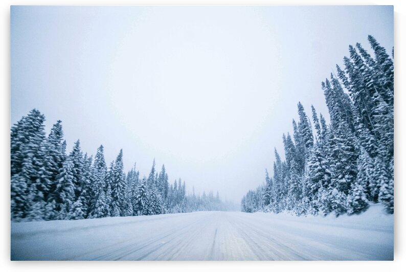 Winter Roads to Adventure by 5280Images