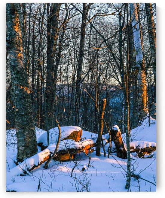 Winter magic - Saint-Adolphe-dHoward by Saïd Khalil