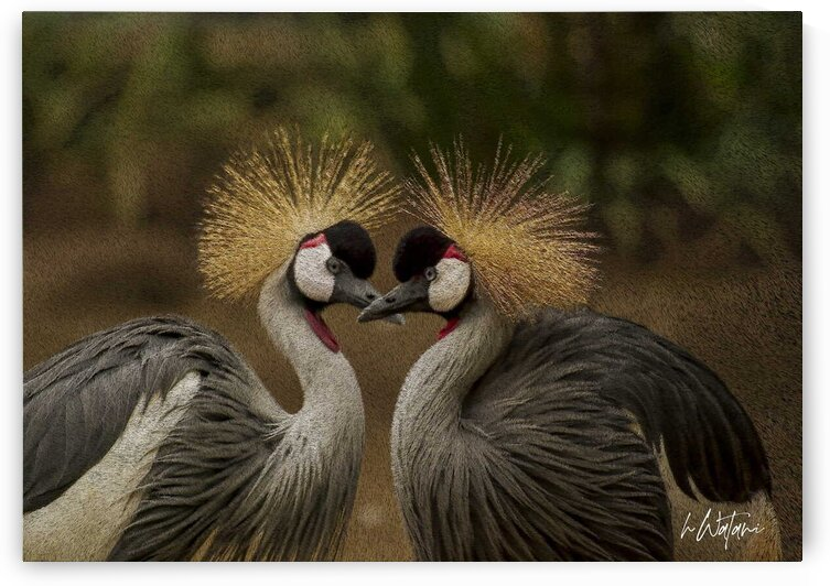 Crested Cranes 1 by Watani Griffith