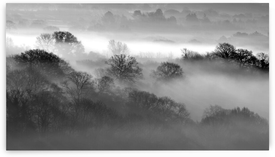 Morning Mist by Geoff Weeks