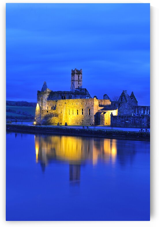 C 386 Timleague Abbey by Michael Walsh