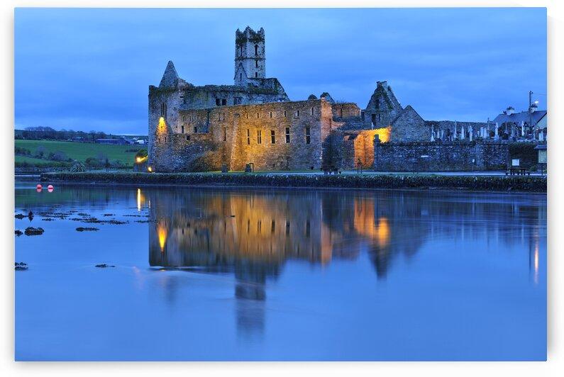 C 385 Timoleague Abbey by Michael Walsh