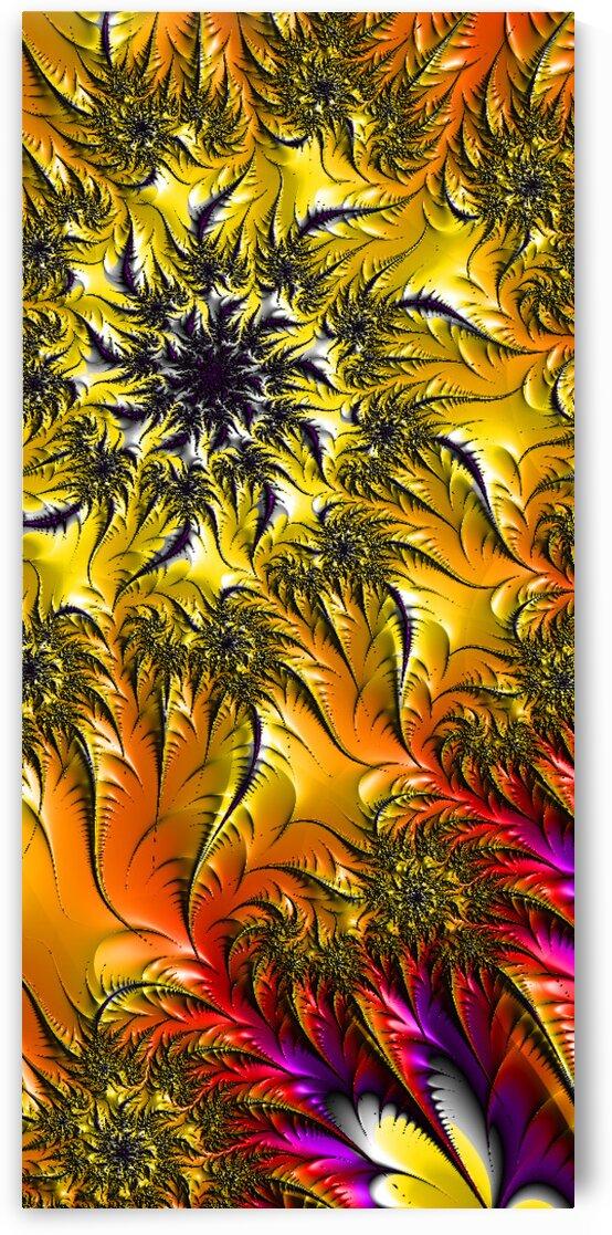 Sunflower by Robert Knight