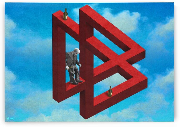 Illusion  by Shahrokh heidari