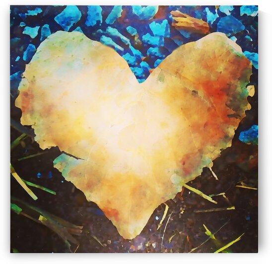 heart leaf by Pierce Anderson