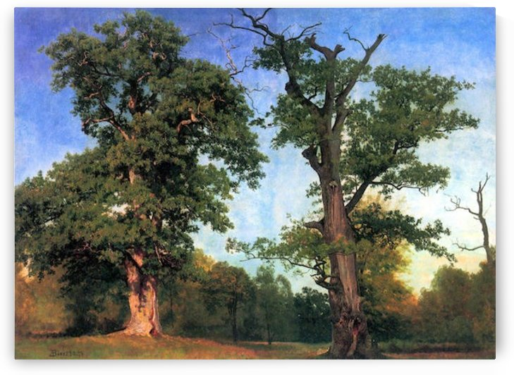 The pioneers of forests by Bierstadt by Bierstadt