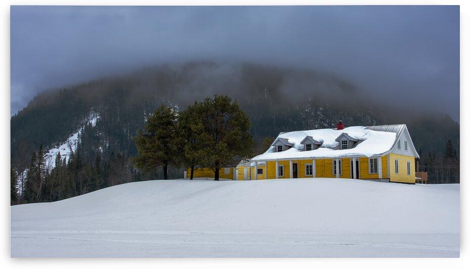 La maison jaune by Douglas Mitchell