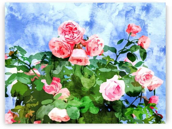Sweet Rose Garden Nature Botanical Watercolor Painting Summer Floral Plants Meadow by 83 Oranges