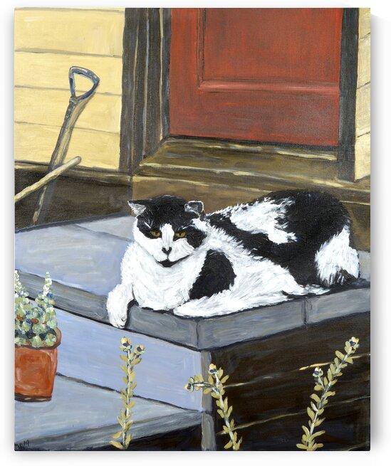 Neighbors Cat by Deborah Alastra