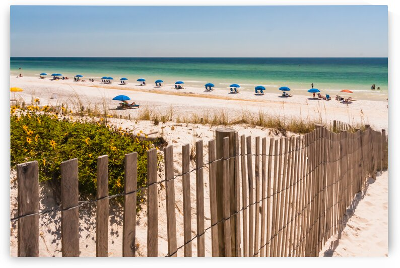 White Sand Beach on the Gulf of Mexico by bj clayden photography