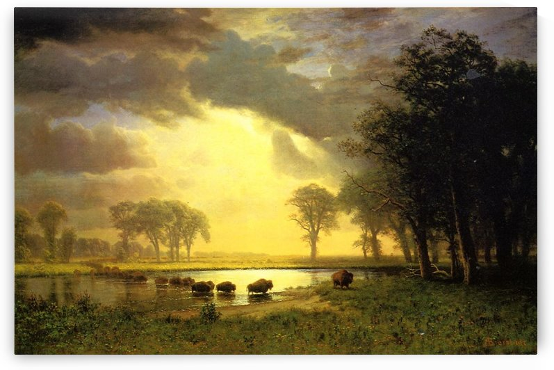 The Buffalo Trail by Albert Bierstadt