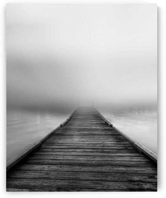 Fog by Bob Orsillo