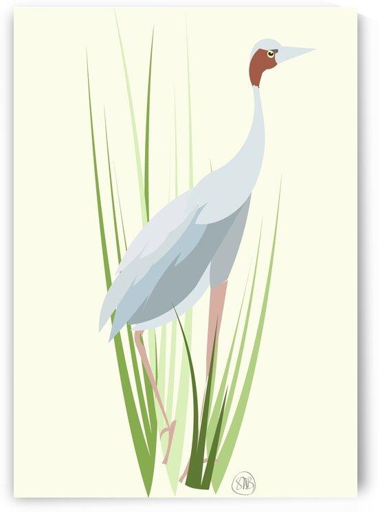 Sarus Crane by Sarah Butcher