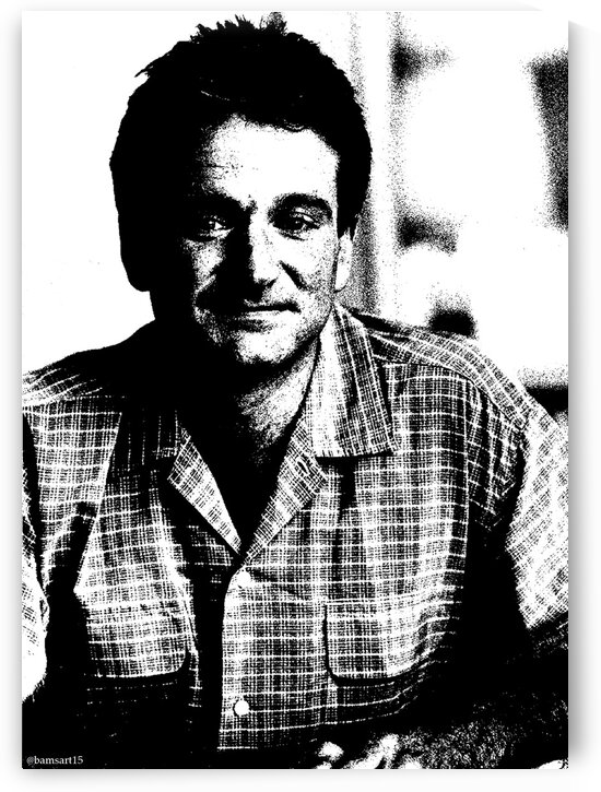Robin Williams by Bam Wilcox