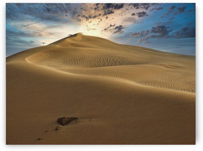 Dubai Desert Dunes by M Damien Suriel