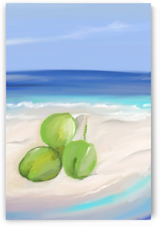 A day at the beach by Ashran Adil