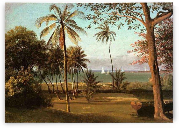 Florida Scene by Albert Bierstadt