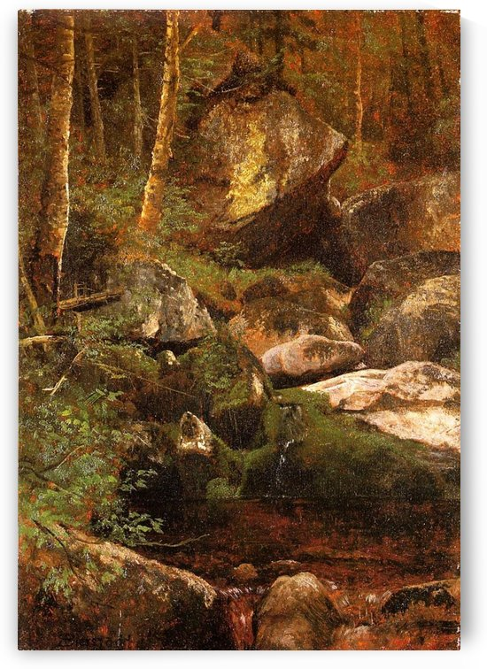 Forest Stream by Albert Bierstadt