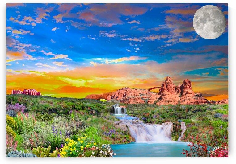 DESERT ARCHES by E D Killion