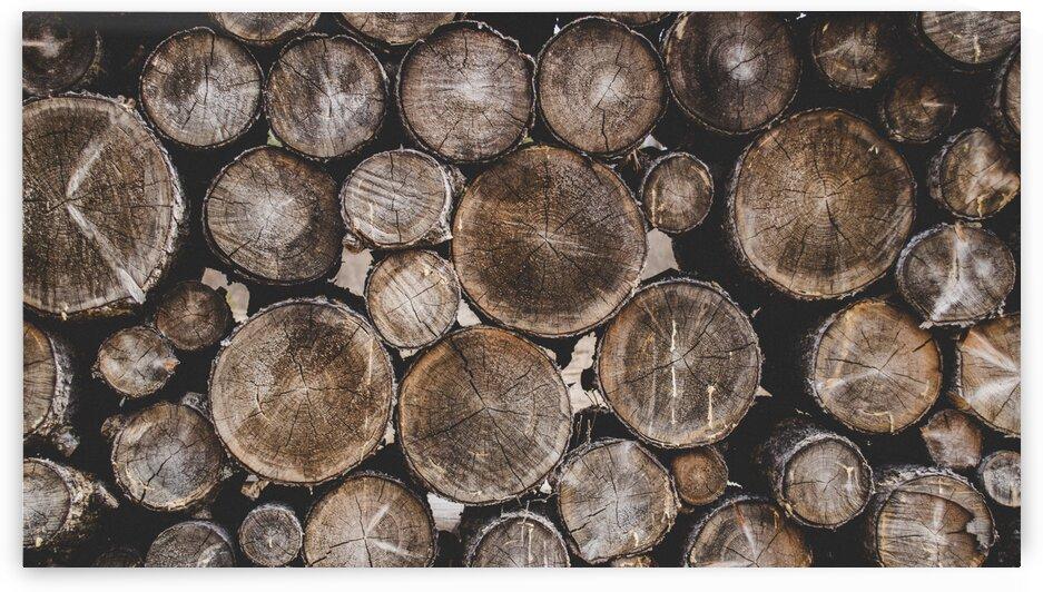 Bark Chopped Chopped Wood Cut Firewood Logs by 7ob
