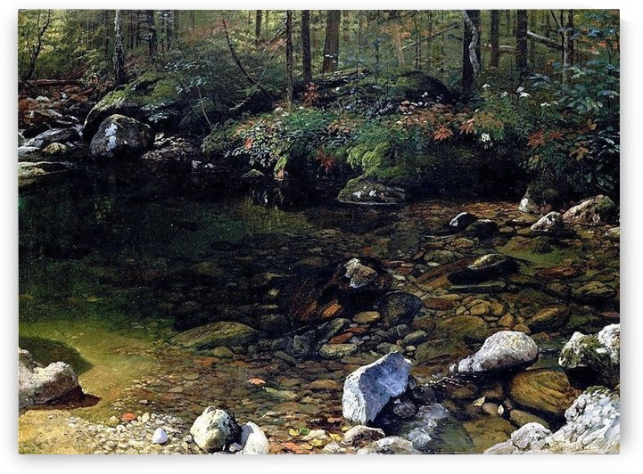 Shady Pool, White Mountains, New Hampshire by Albert Bierstadt