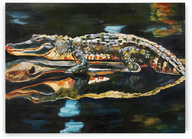 Horizontal Louisiana Alligator on a Log in the Bayou by Caroline Youngblood