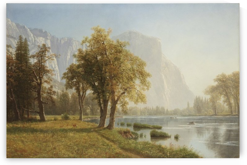 El Capitan Yosemite by Albert Bierstadt