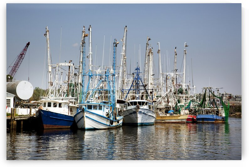 Bayou la Batre Is a Fishing Village With a Seafood Processing Harbor for Fishing Boats and Shrimp Boats.. by 7ob