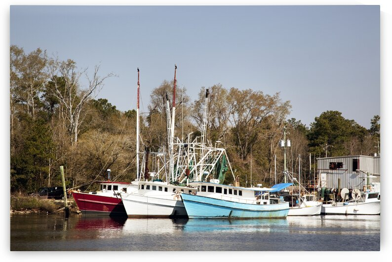 Bayou la Batre Is a Fishing Village With a Seafood Processing Harbor for Fishing Boats and Shrimp Boats. by 7ob
