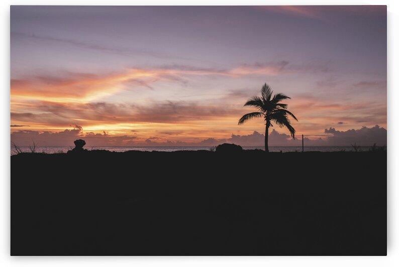 Grand Sirenis Riviera Maya Resort  Akumal  Mexico. by 7ob